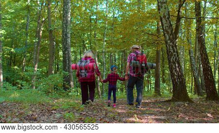 Back View Of Senior Elderly Grandmother Grandfather Walking With Granddaughter In Wood. Old Man Woma
