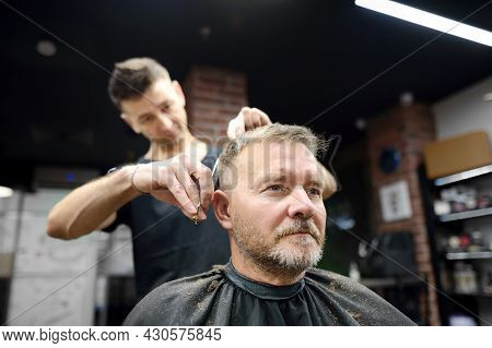 Hairdresser Is Cutting Hair Of Handsome Bearded Mature Man In Salon. Stylist Making Hairstyle For Cl