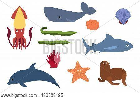 Set Of Sea Animals - Squid Sperm Whale Shark Dolphin Starfish Fur Seal . Undersea World Habitants Pr