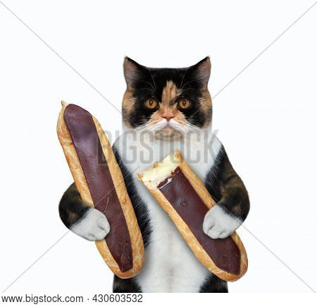 A Colored Cat Is Eating Chocolate Eclairs. White Background. Isolated.