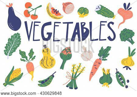 Vegetable Set. Healthy Food. Hand Drawn Fresh Delicious Vegetables Isolated On White Background. Veg