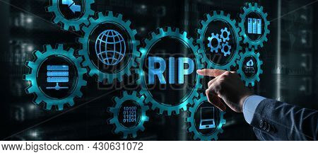 Rip Routing Information Protocol. Technology Networks Cocept 2021