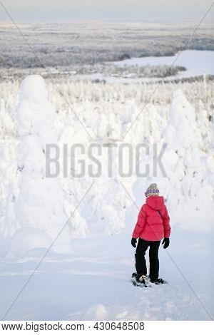 Back view of pre-teen girl hiking in snowshoes in winter forest among snow covered trees in Lapland Finland
