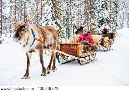 Teenage kids on reindeer safari in winter forest in Lapland Finland