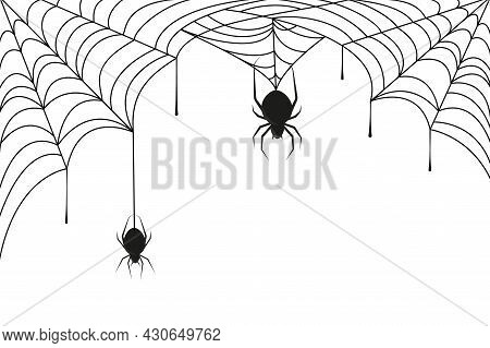 Spider On Black Cobweb. Halloween Background Or Frame With Weaving Web In Corner And Silhouette Of H