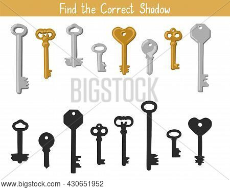 Shadow Matching Game For Children. Find The Correct Shadow Educational Task For Kids. Find The Right