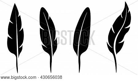 Set Of Feathers, Black Icons Of Various Shapes. Feather Silhouette Template For Writing. Write In In