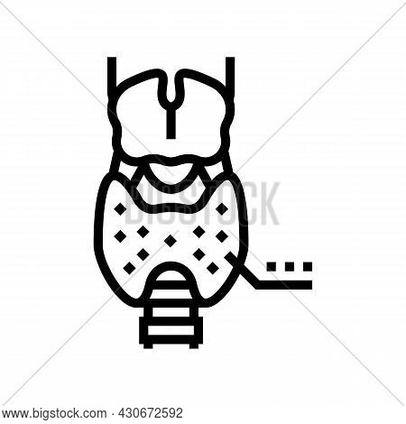Thyroid Gland Endocrinology Line Icon Vector. Thyroid Gland Endocrinology Sign. Isolated Contour Sym