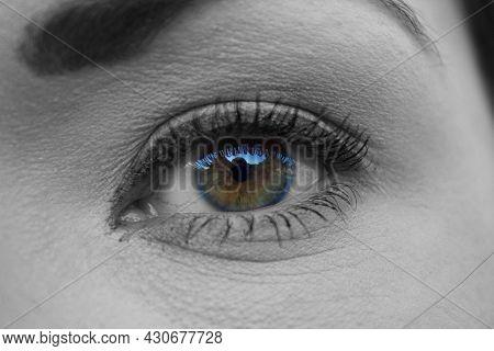 A Girl's Eye Zone Make-up Eyes Woman Eyebrow Eyes Lashes