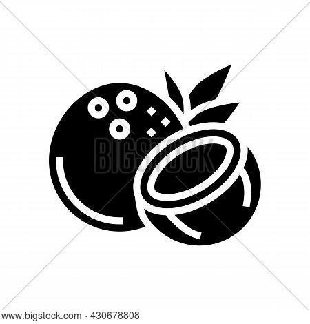Coconut Exotic Nut Glyph Icon Vector. Coconut Exotic Nut Sign. Isolated Contour Symbol Black Illustr