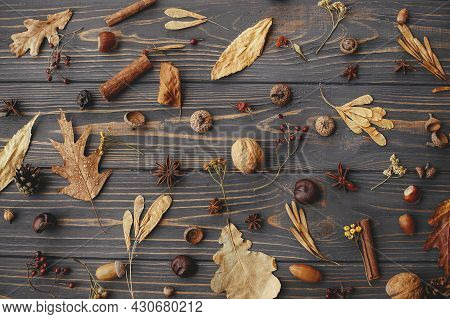 Autumn Background Flat Lay. Autumn Leaves, Berries, Nuts, Anise, Acorns, Pine Cones On Rustic Dark W