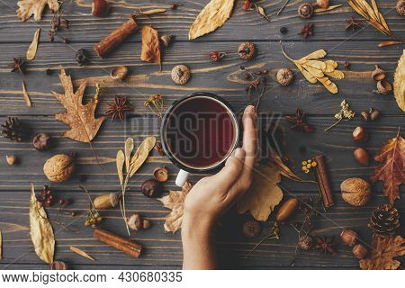 Cozy Autumn Days. Hand Holding Warm Cup Of Tea On Background Of Autumn Leaves, Berries, Nuts, Anise,