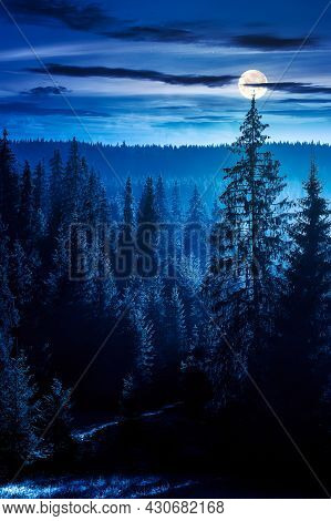 Coniferous Forest At Foggy Night. Trees At The Foot Of A Hill In Full Moon Light. Blue Sky With Fluf