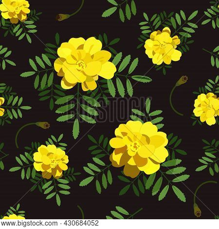 Bright Floral Background Of Yellow Flowers, Leaves And Buds On A Black Background