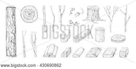 Hand Drawn Wood Log. Sketch Of Tree Trunk And Plank. Wooden Branch And Lumber. Natural Timber Constr