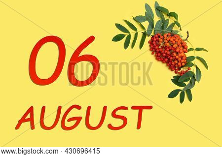 6th Day Of August. Rowan Branch With Red And Orange Berries And Green Leaves And Date Of 6 August On