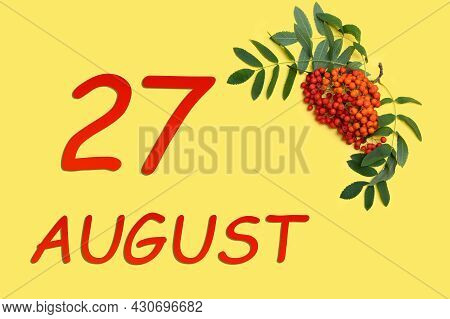27th Day Of August. Rowan Branch With Red And Orange Berries And Green Leaves And Date Of 27 August