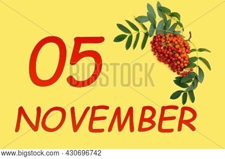 5th Day Of November. Rowan Branch With Red And Orange Berries And Green Leaves And Date Of 5 Novembe