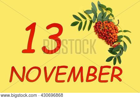 13th Day Of November. Rowan Branch With Red And Orange Berries And Green Leaves And Date Of 13 Novem