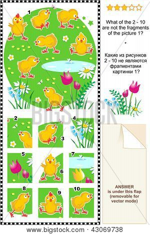 Cute little chickens visual logic puzzle