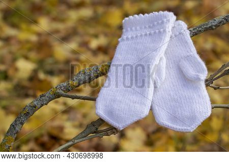 White Woolen Hand-woven Mittens Hanging On A Branch On A Autumnal Yellow Background