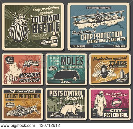 Crop Fields And House Protection From Pests Banner. Airplane Dusting Crops, Colorado Beetle, Locust