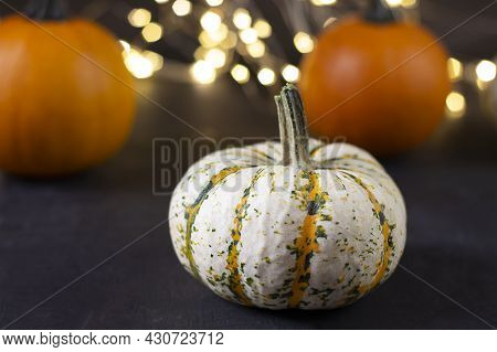 Thanksgiving Background. Thanksgiving Day Autumn Background. Thanksgiving Card. Thanksgiving Festive
