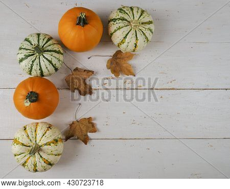 Thanksgiving Background. Thanksgiving Day Autumn Background. Thanksgiving Autumn Background Of Pumpk