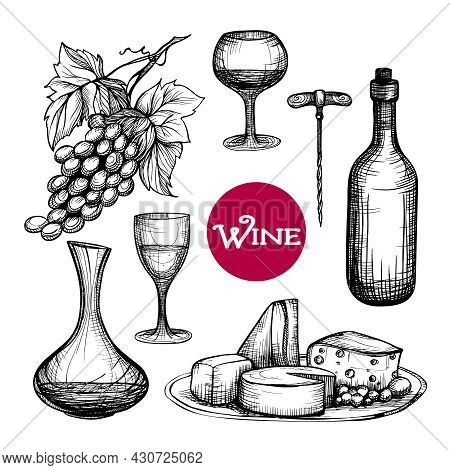 Hand Drawn Wine Set With Grape Branch Drink Bottle Cheese Isolated Vector Illustration