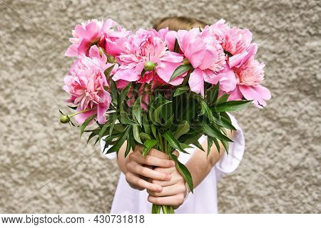 Peony Pink Bouquet. Female People Holding Flowers. Faceless Lifestyle Concept. Summer Postcard. Anon
