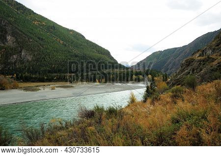 A Beautiful Mountain River Flowing Through The Aspen Valleys At The Foot Of A High Hill.