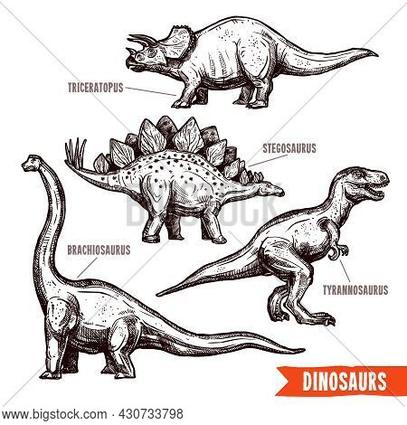 Prehistoric Dinosaurs 4 Diverse Jurassic Reptiles Animals Hand Drawn Pictograms Collection Black Doo