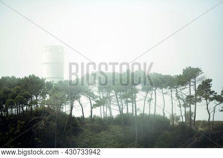 View of the Biological Park of S.Paio in Vila Nova de Gaia, Porto, Portugal.