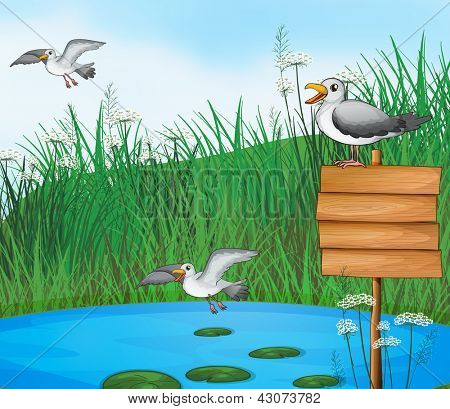 Illustration of the three birds at the pond with a signboard poster