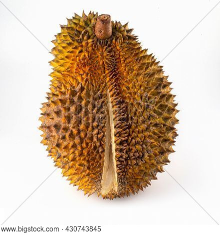 Durian king of fruit isolated on white