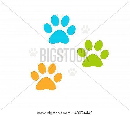 Footprints of pets