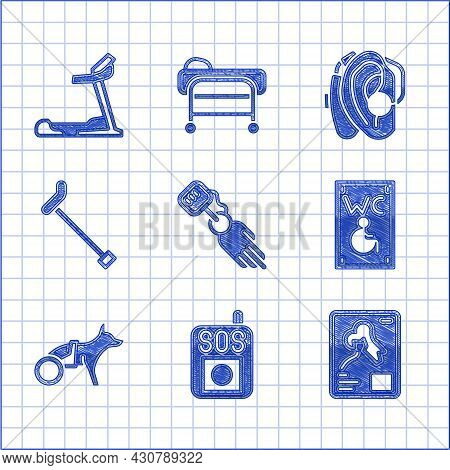Set Prosthesis Hand, Press Sos Button, X-ray Shots, Separated Toilet For Disabled, Dog In Wheelchair
