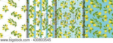 Lemon Seamless Patterns Set. Fruit Repeat Backgrounds