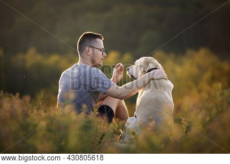 Man With Dog Sitting Together On Meadow. Pet Owner Holding Treat For His Obedient Labrador Retriever