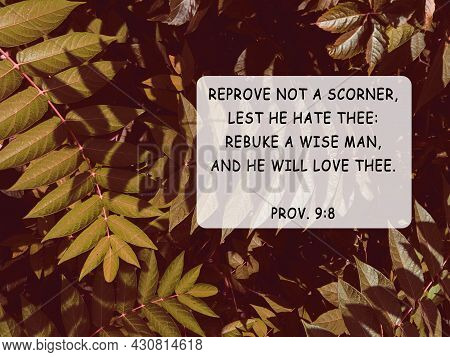 Bible Quotes Autumn Leaves Nature Background. Card Text For Believers. Inspirational Christian Prayi