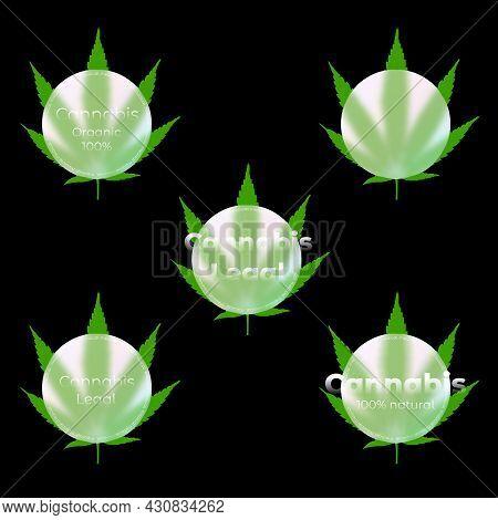 Medical Cannabis Emblems, Label, Leaf Logo Set. Glass Morphism. Lettering. Marijuana Label For Recre