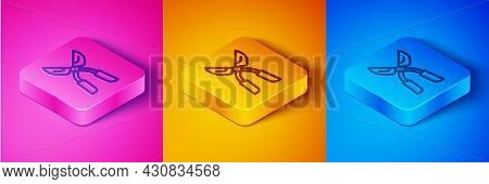 Isometric Line Gardening Handmade Scissors For Trimming Icon Isolated On Pink And Orange, Blue Backg