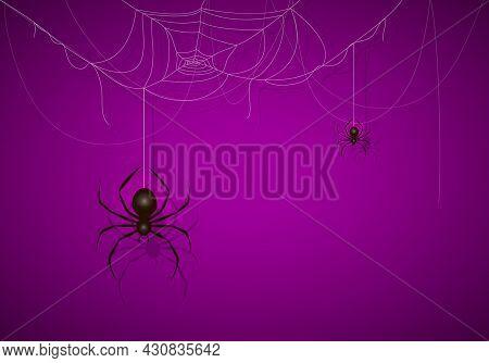 Big Black Spider On Purple Halloween Background. Banner With Scary Black Spiders On Cobwebs. Illustr