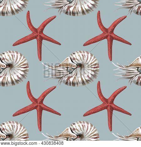 Nautilus Mollusk Nautilus Pompillius On A Black-white Striped Background, Hand Drawn Watercolor Illu