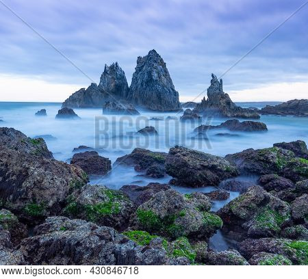 Green Seaweed On Rocks With Camel Rock In The Background At Bermagui On The Nsw Coast Of Australia