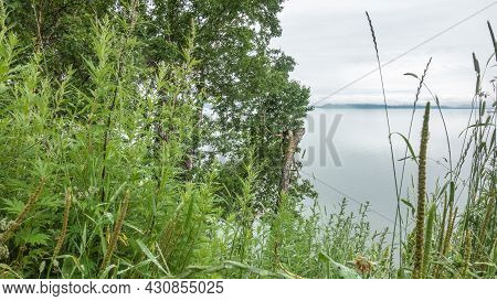 Lush Green Grass And Trees Grow On The Hill. The Calm Ocean Is Visible Through The Greenery. On The