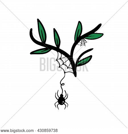 Little Spider Hanging On Spider's Web On Branch With Green Leaves Vector Doodle Icon, Illustration.