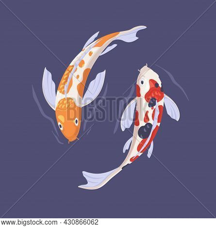 Couple Of Koi Fishes Swimming Alongside In Asian Pond. Two Oriental Japanese Decorative Carps In Wat