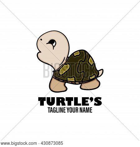 Turtles Cartoon Character Design Vector. Turtles Illustration Vector