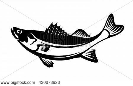Black And White Illustration Of The Barramundi Fish Vector Design